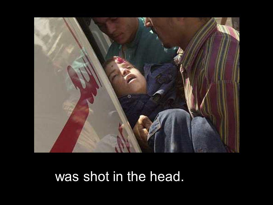 A Palestinian boy.…