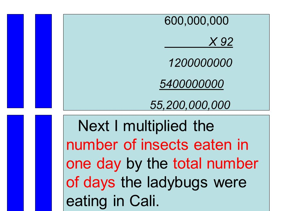 600,000,000 X 92 1200000000 5400000000 55,200,000,000 Next I multiplied the number of insects eaten in one day by the total number of days the ladybugs were eating in Cali.