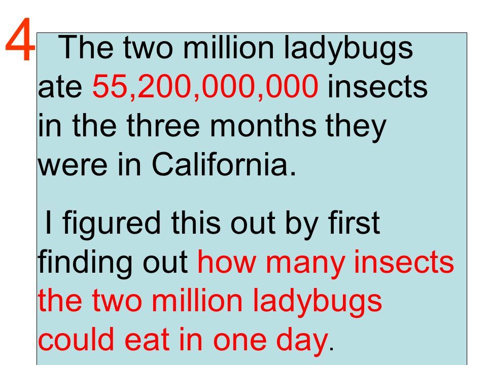The two million ladybugs ate 55,200,000,000 insects in the three months they were in California.