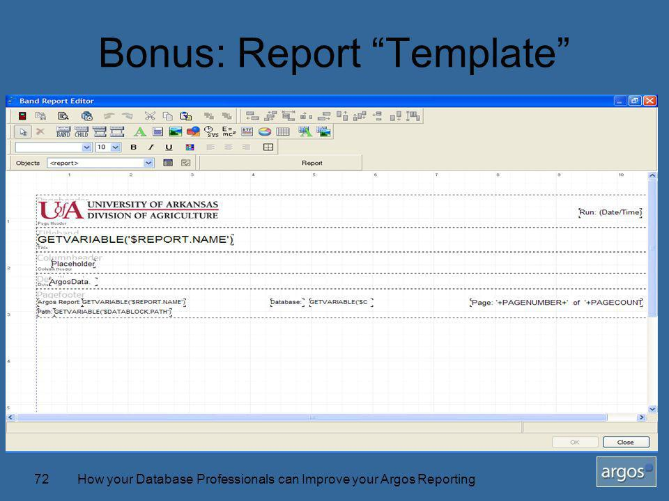 How your Database Professionals can Improve your Argos Reporting72 Bonus: Report Template
