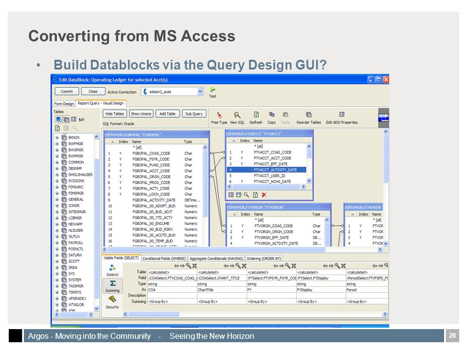 28 Argos - Moving into the Community - Seeing the New Horizon Converting from MS Access Build Datablocks via the Query Design GUI