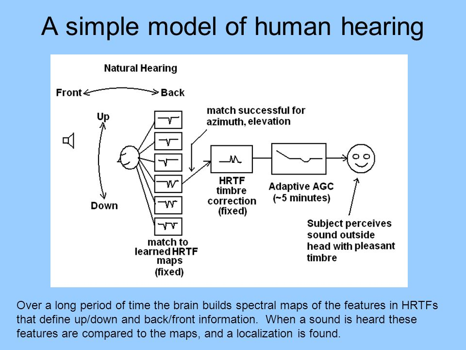 A simple model of human hearing Over a long period of time the brain builds spectral maps of the features in HRTFs that define up/down and back/front