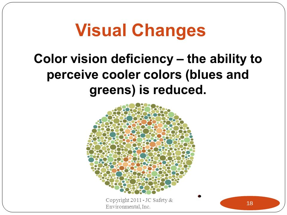 Visual Changes Color vision deficiency – the ability to perceive cooler colors (blues and greens) is reduced. 18 Copyright 2011 - JC Safety & Environm
