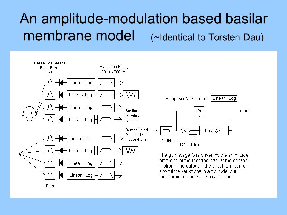 An amplitude-modulation based basilar membrane model (~Identical to Torsten Dau)
