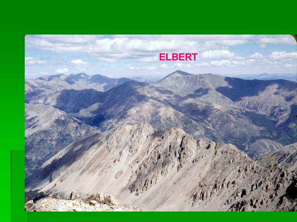 ELBERT ELBERT ELBERT