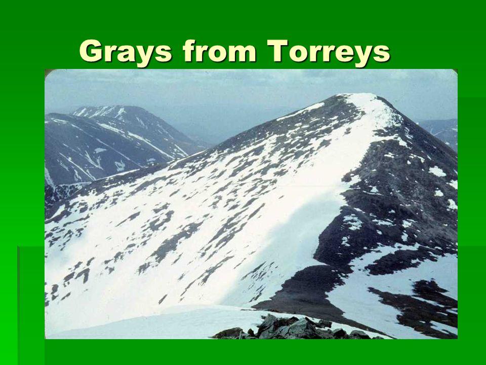 Grays from Torreys Grays from Torreys