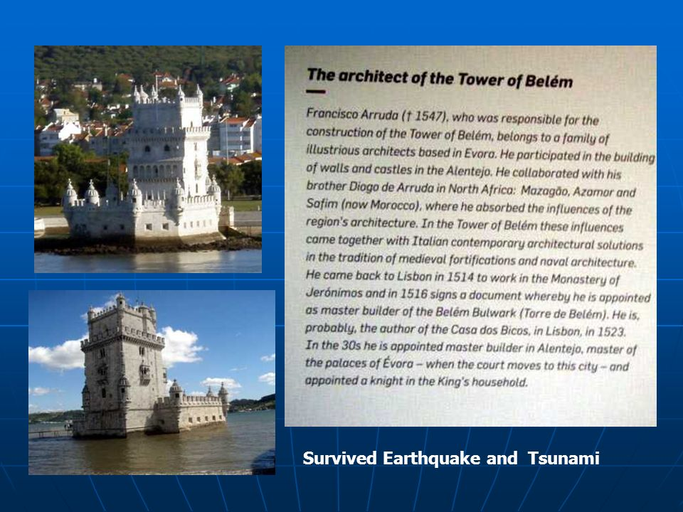 Survived Earthquake and Tsunami