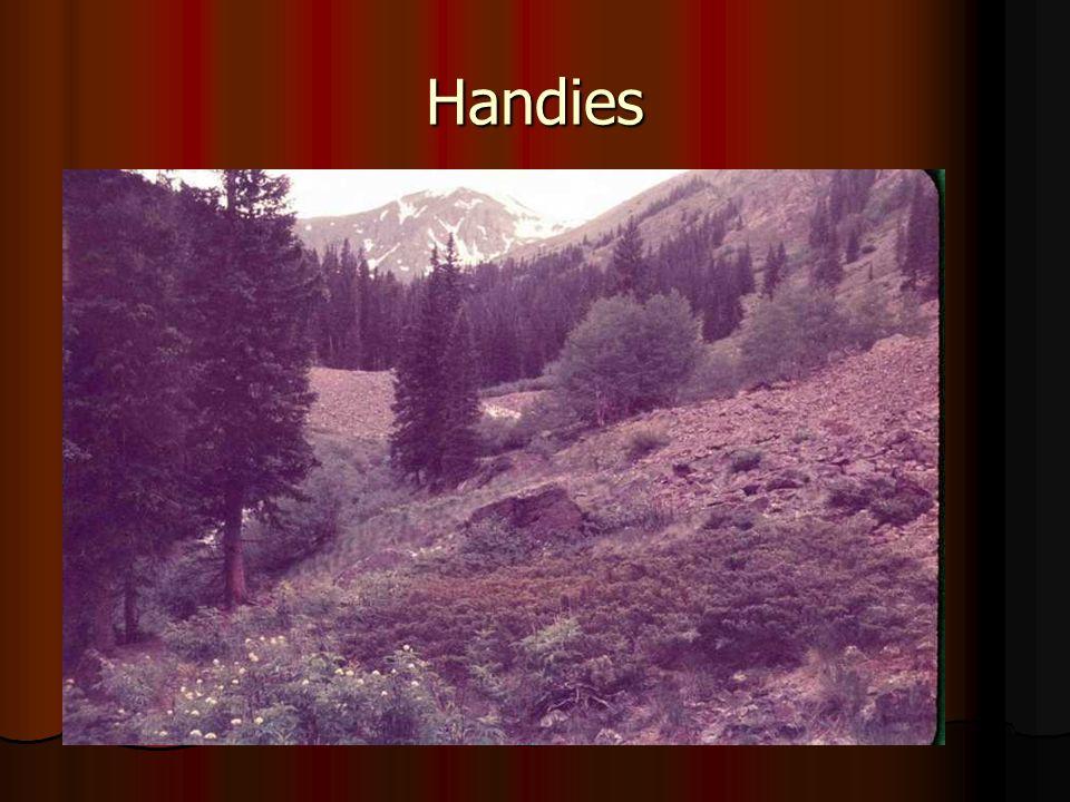 Handies
