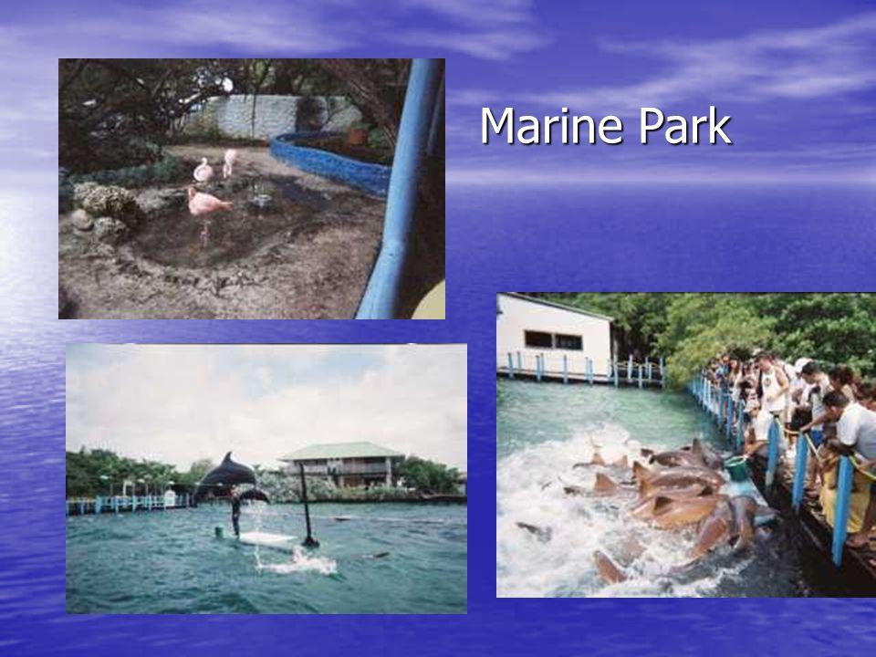 Marine Park Marine Park