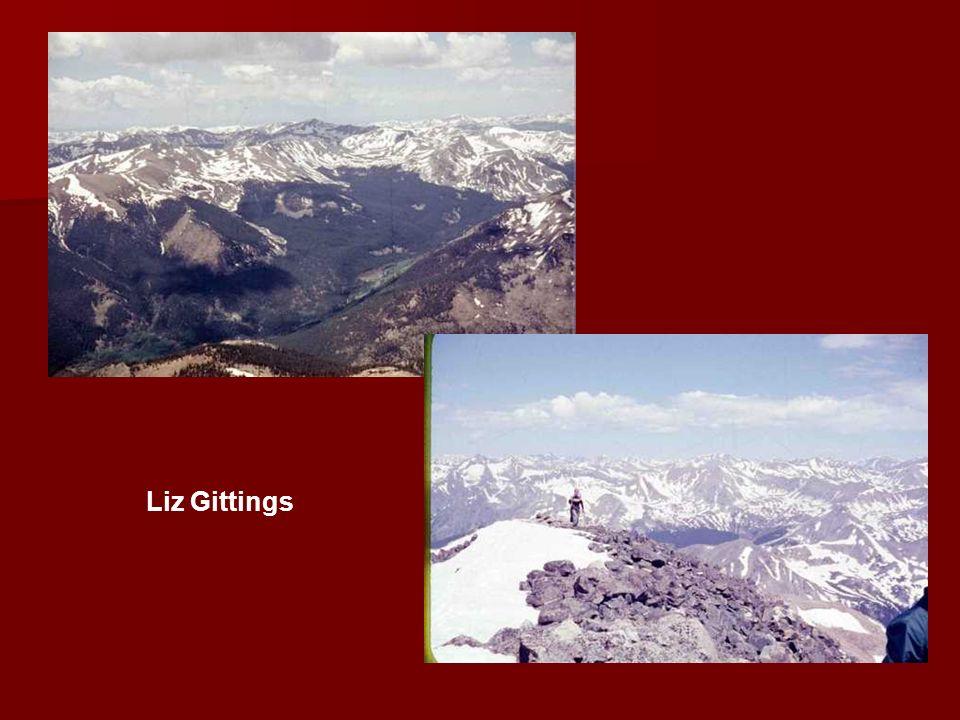 Liz Gittings
