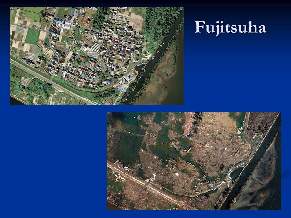 Fujitsuha