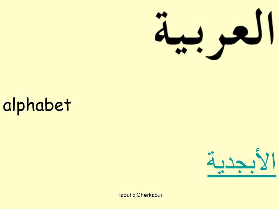In groups, match the letters in the Arabic alphabet to the letter in the English alphabet Starter: Taoufiq Cherkaoui