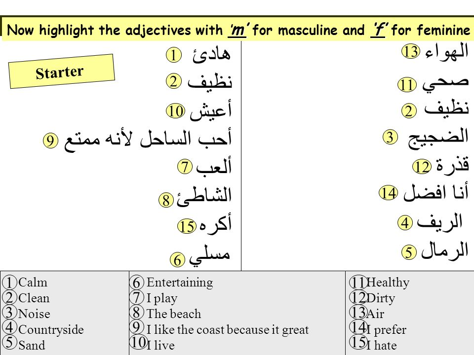 Read the text and answer the questions that follow in English الهواء صحي نظيف الضجيج قذرة أنا افضل الريف الرمال مسلي هادئ نظيف أعيش أحب الساحل لأنه ممتع ألعب الشاطئ أكره Calm Clean Noise Countryside Sand Entertaining I play The beach I like the coast because it great I live Healthy Dirty Air I prefer I hate 1 2 3 4 5 6 7 8 9 10 11 12 13 14 15 Starter 1 2 3 4 5 6 7 8 9 10 11 12 13 14 15 2 Now highlight the adjectives with m for masculine and f for feminine
