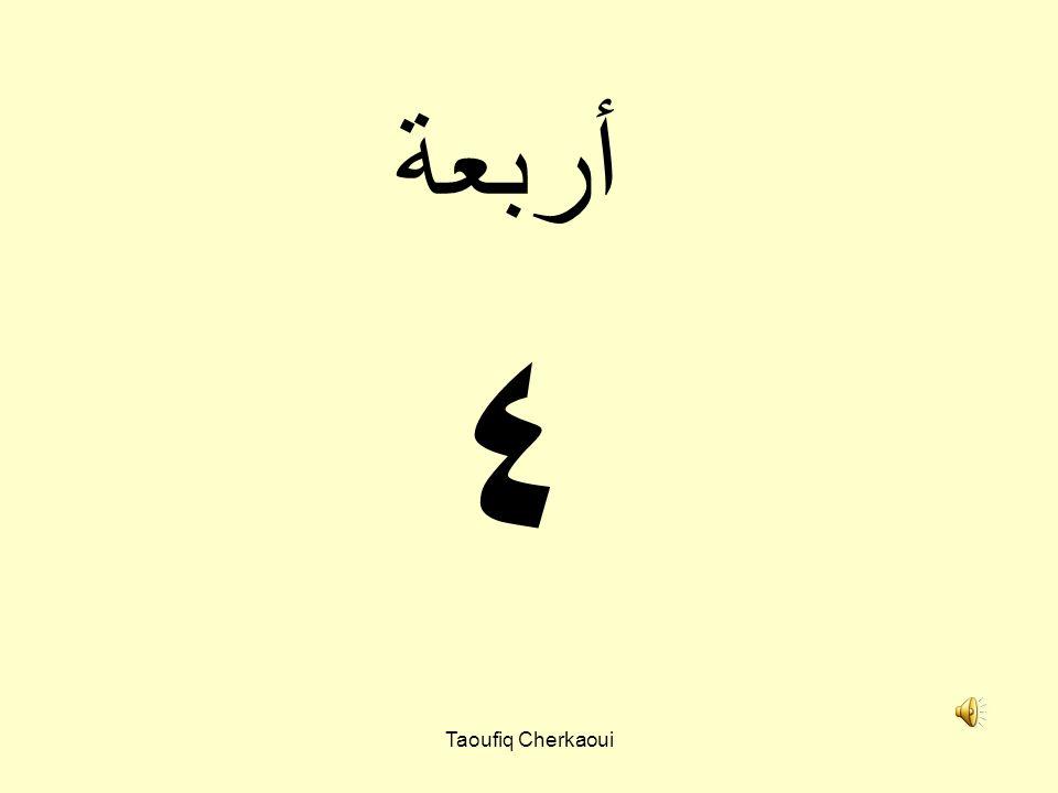 ٣ ثلاثة Taoufiq Cherkaoui