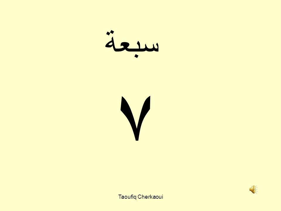 ٦ ستة Taoufiq Cherkaoui