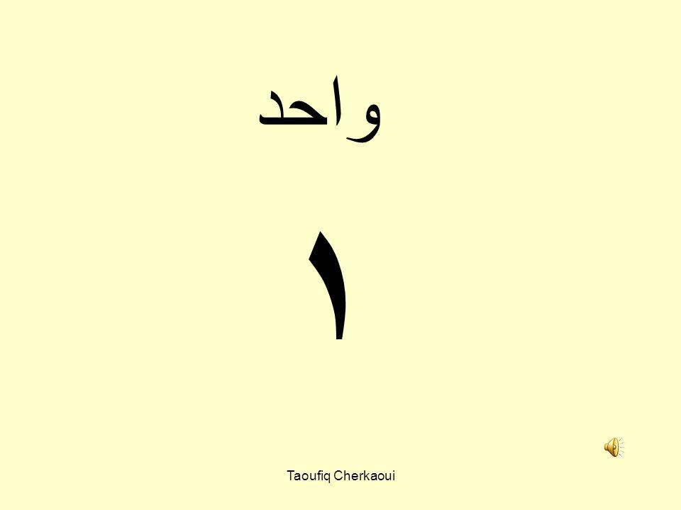 ١ واحد Taoufiq Cherkaoui