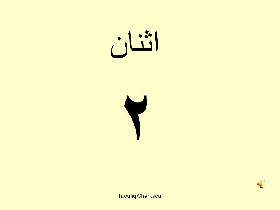Arabic numbers Taoufiq Cherkaoui