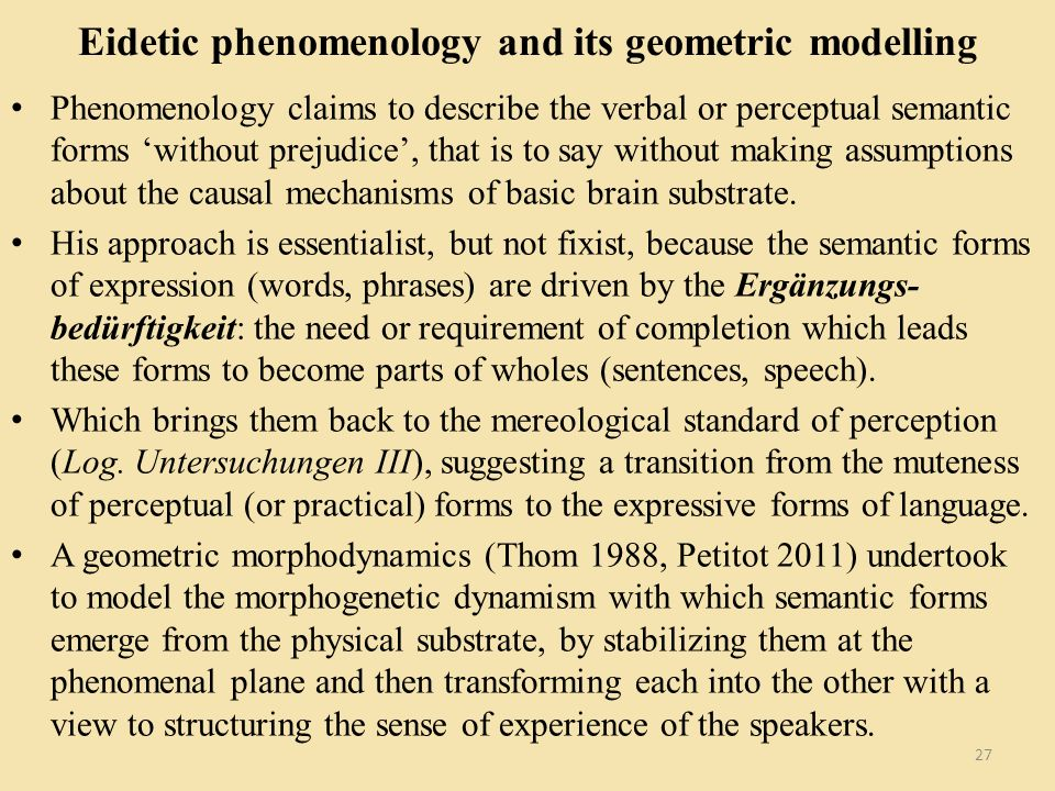 Eidetic phenomenology and its geometric modelling Phenomenology claims to describe the verbal or perceptual semantic forms without prejudice, that is to say without making assumptions about the causal mechanisms of basic brain substrate.