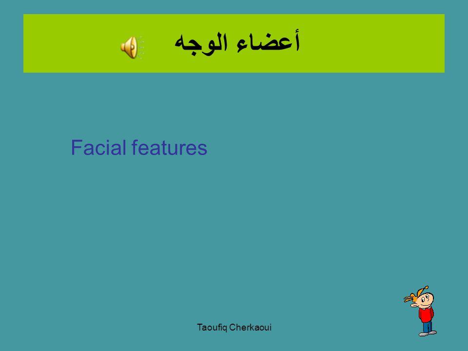 Complete the wordsearch. Taoufiq Cherkaoui