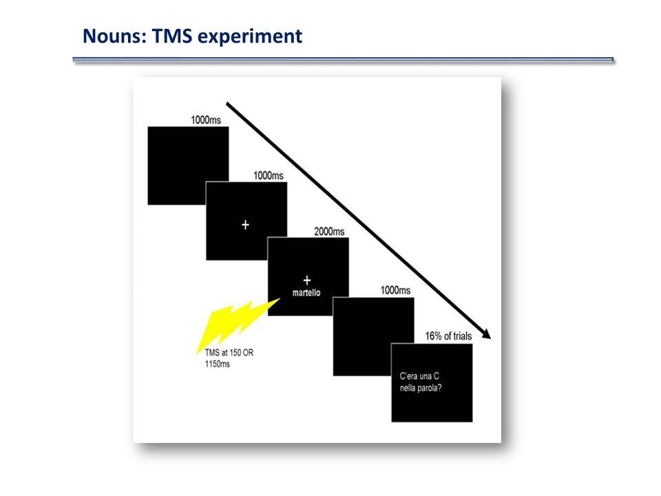 Nouns: TMS experiment