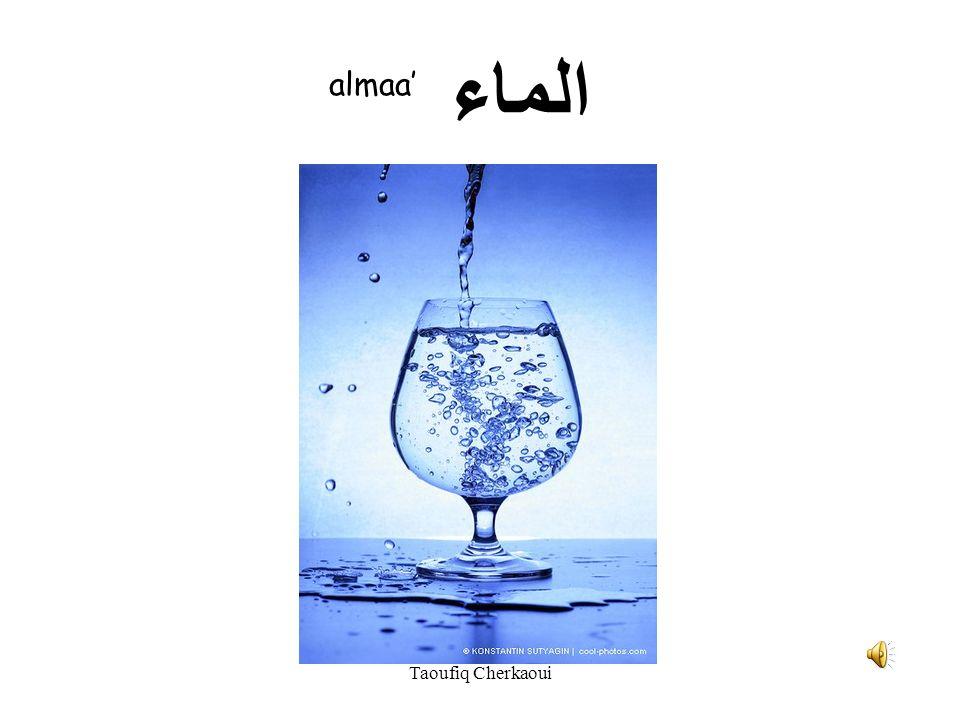 الشاي ashaay Taoufiq Cherkaoui