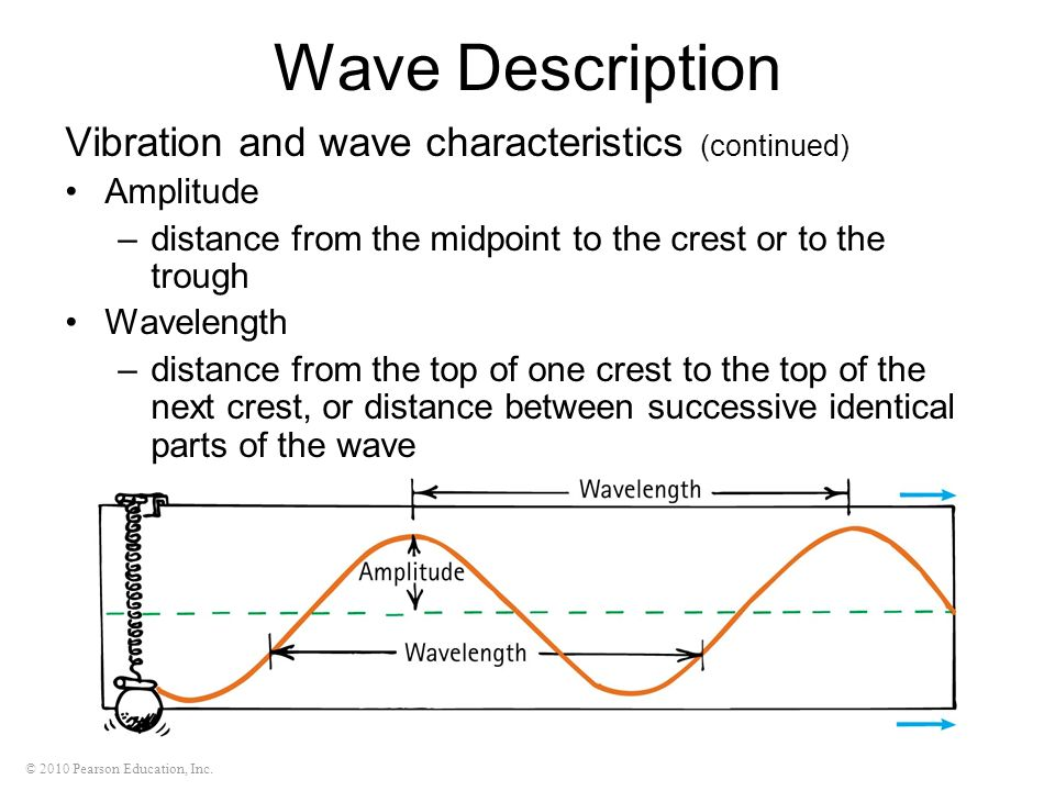 © 2010 Pearson Education, Inc. Wave Description Vibration and wave characteristics (continued) Amplitude –distance from the midpoint to the crest or t
