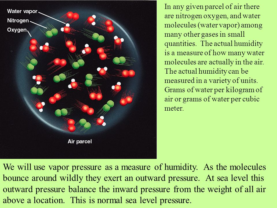 In any given parcel of air there are nitrogen oxygen, and water molecules (water vapor) among many other gases in small quantities. The actual humidit