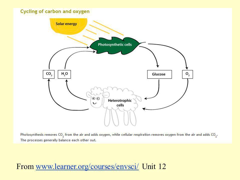 From www.learner.org/courses/envsci/ Unit 12www.learner.org/courses/envsci/