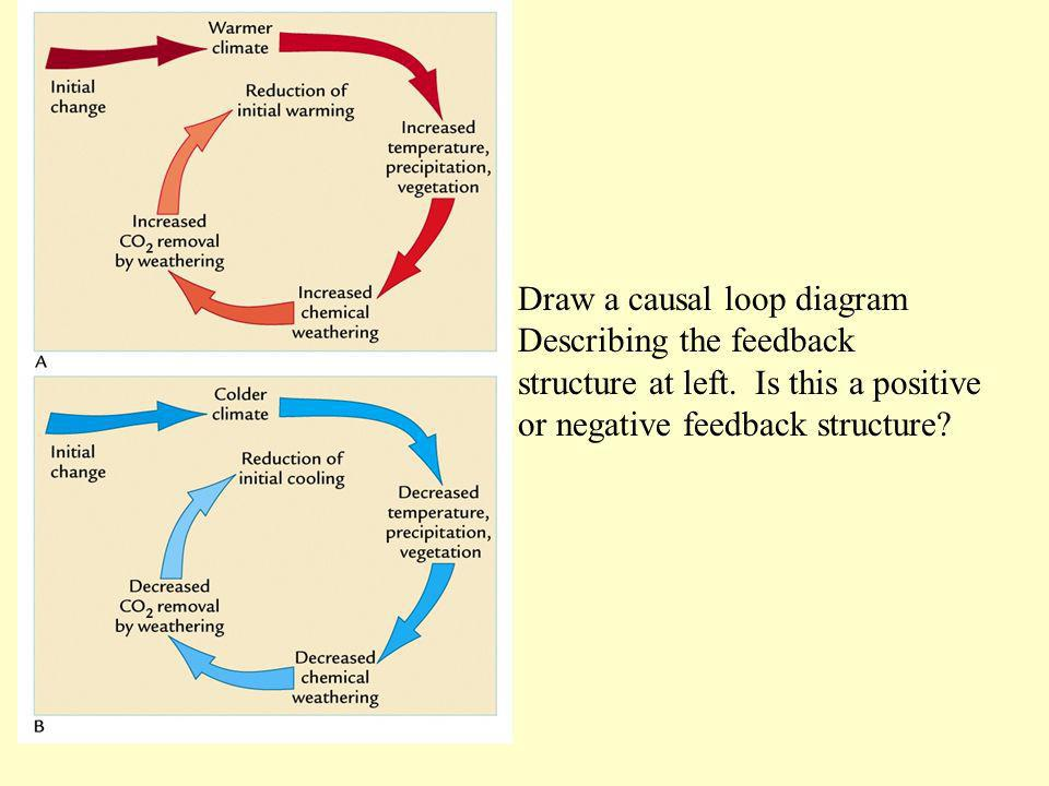 Draw a causal loop diagram Describing the feedback structure at left. Is this a positive or negative feedback structure?