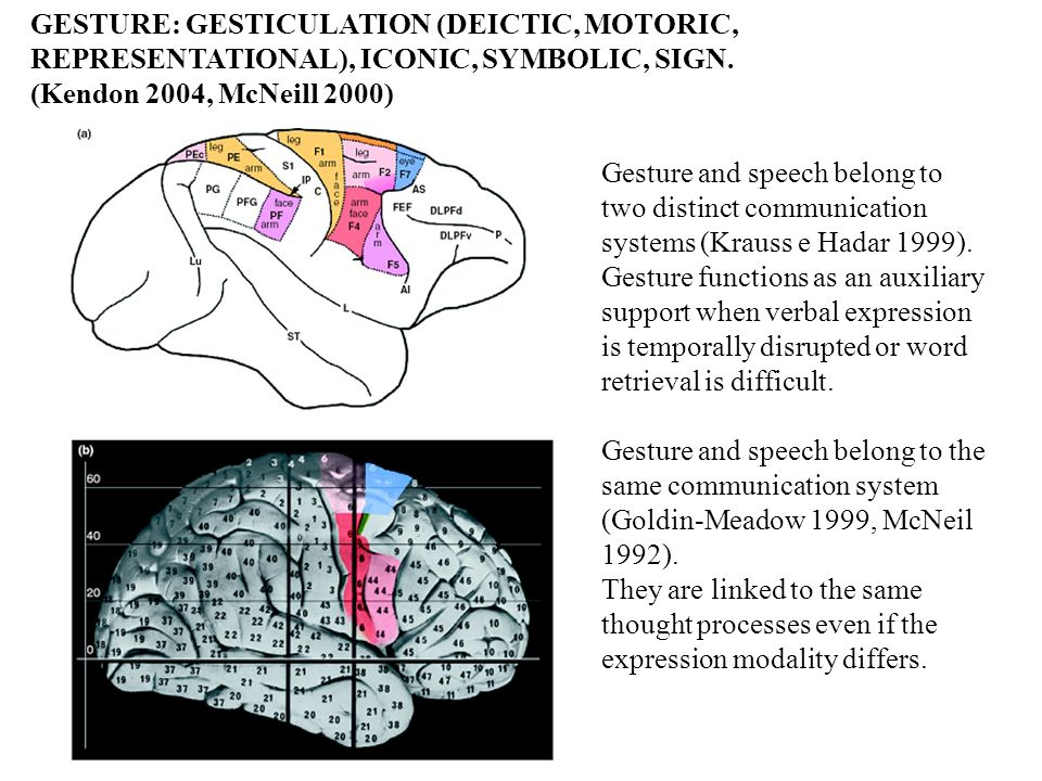 Gesture and speech belong to two distinct communication systems (Krauss e Hadar 1999). Gesture functions as an auxiliary support when verbal expressio