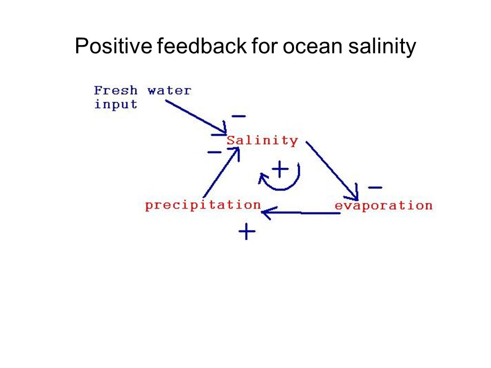 Positive feedback for ocean salinity