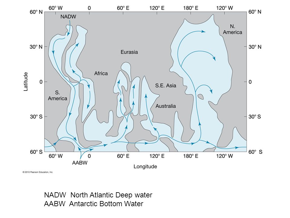 NADW North Atlantic Deep water AABW Antarctic Bottom Water