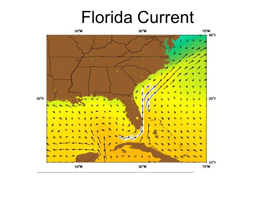 Florida Current