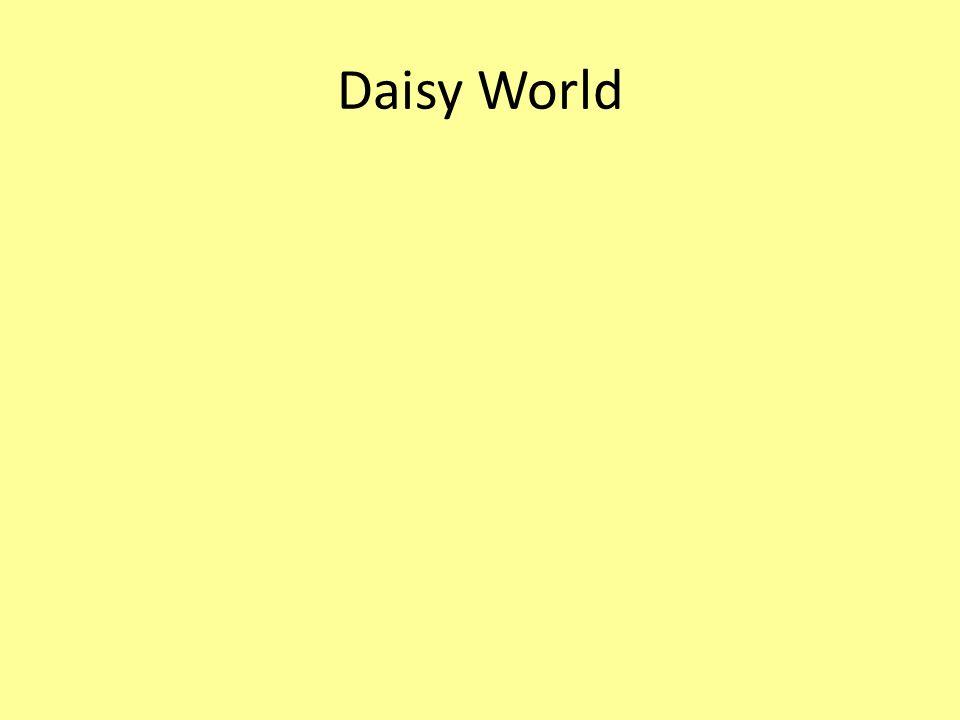 Daisy World
