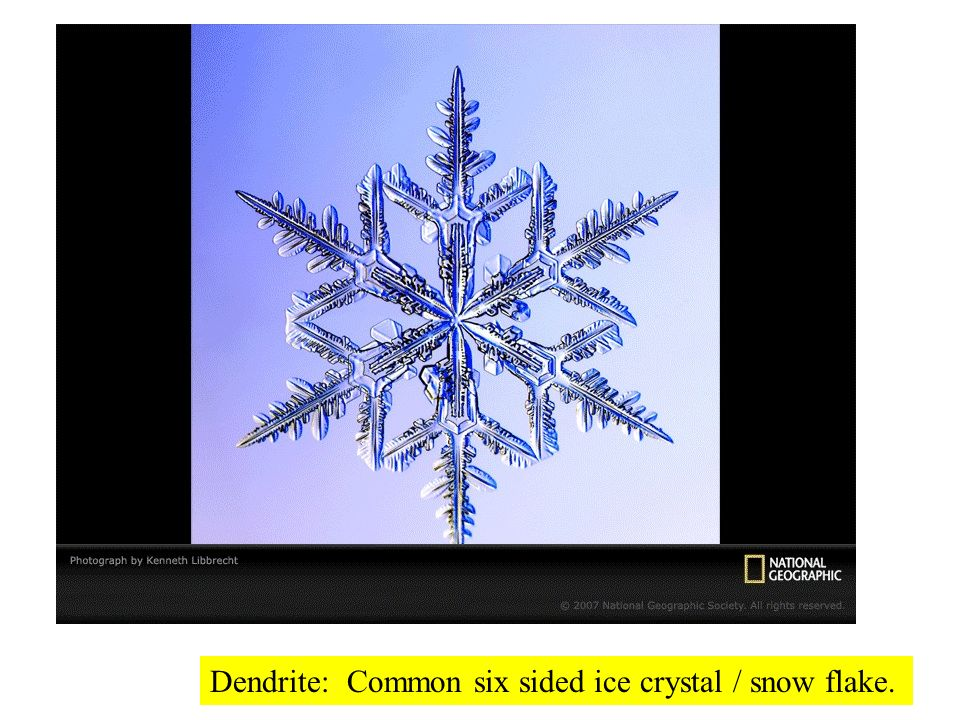 Dendrite: Common six sided ice crystal / snow flake.