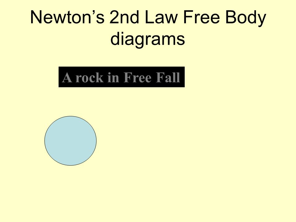 Newtons 2nd Law Free Body diagrams A rock in Free Fall