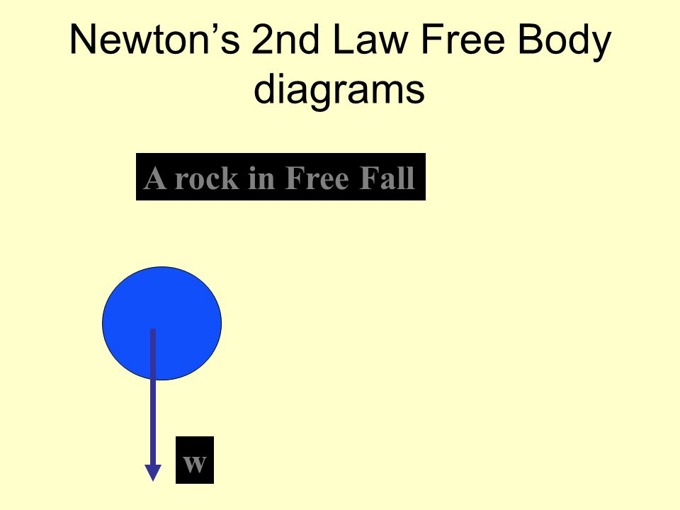 Newtons 2nd Law Free Body diagrams A rock in Free Fall w