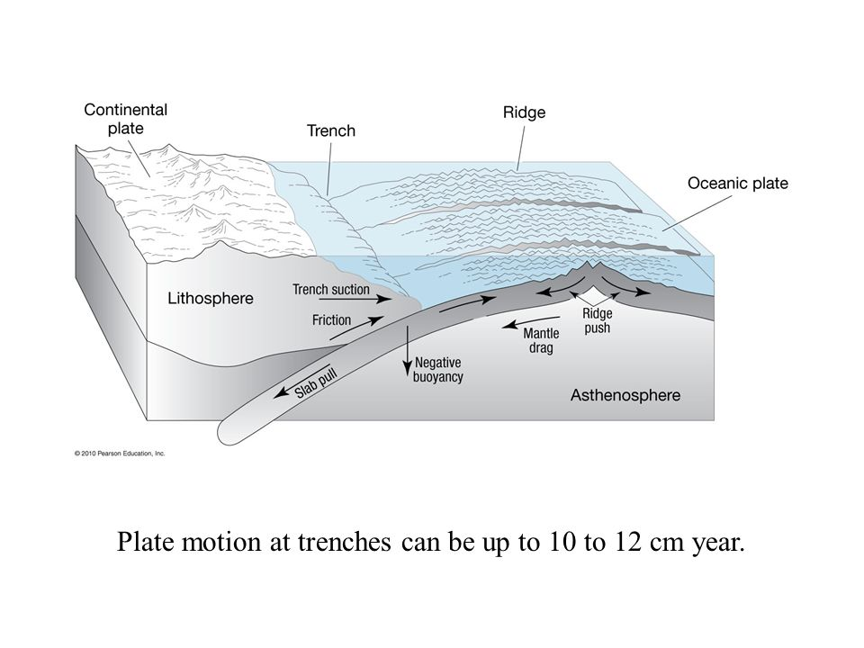 Plate motion at trenches can be up to 10 to 12 cm year.