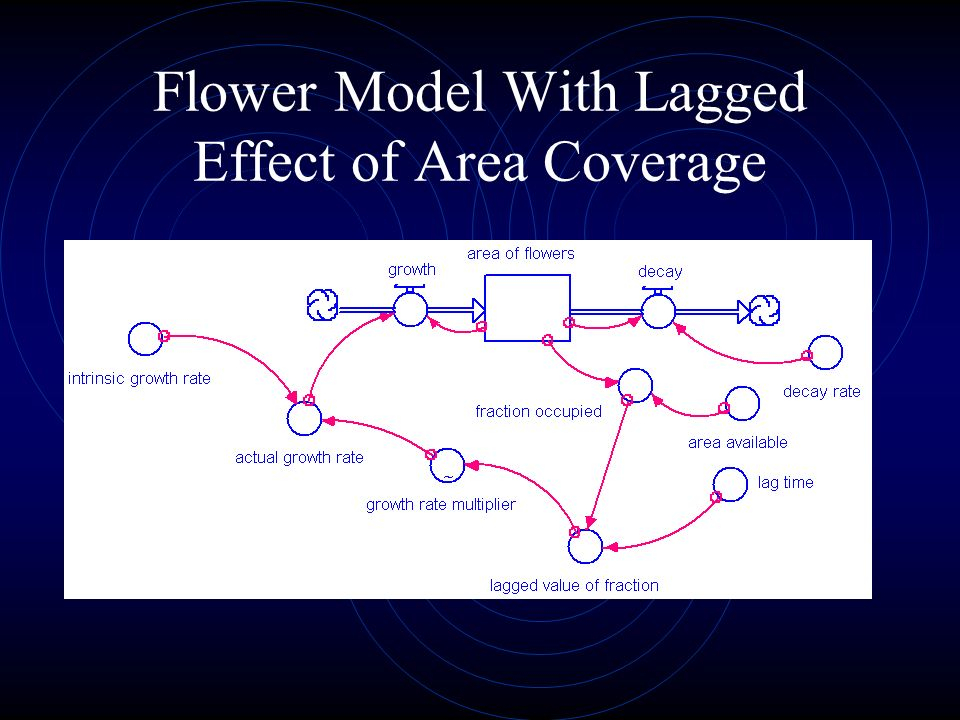 Flower Model With Lagged Effect of Area Coverage