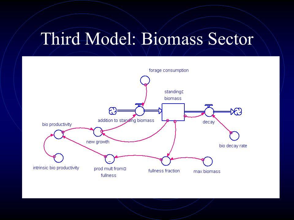 Third Model: Biomass Sector