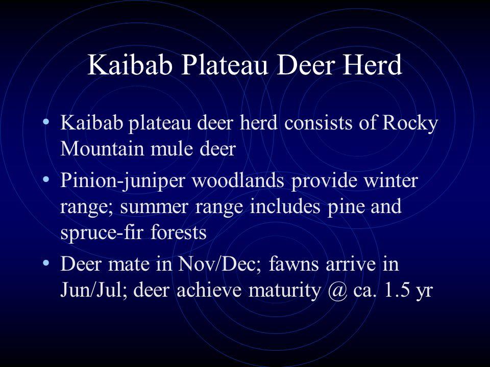 Kaibab Plateau Deer Herd Kaibab plateau deer herd consists of Rocky Mountain mule deer Pinion-juniper woodlands provide winter range; summer range inc