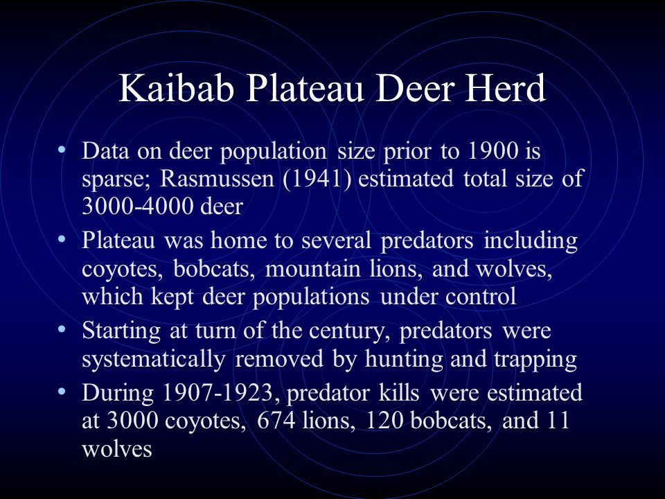 Kaibab Plateau Deer Herd Data on deer population size prior to 1900 is sparse; Rasmussen (1941) estimated total size of 3000-4000 deer Plateau was hom