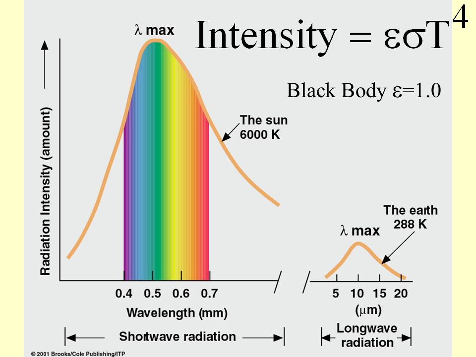The hole acts like a blackbody.All radiant energy is absorbed none is reflected.