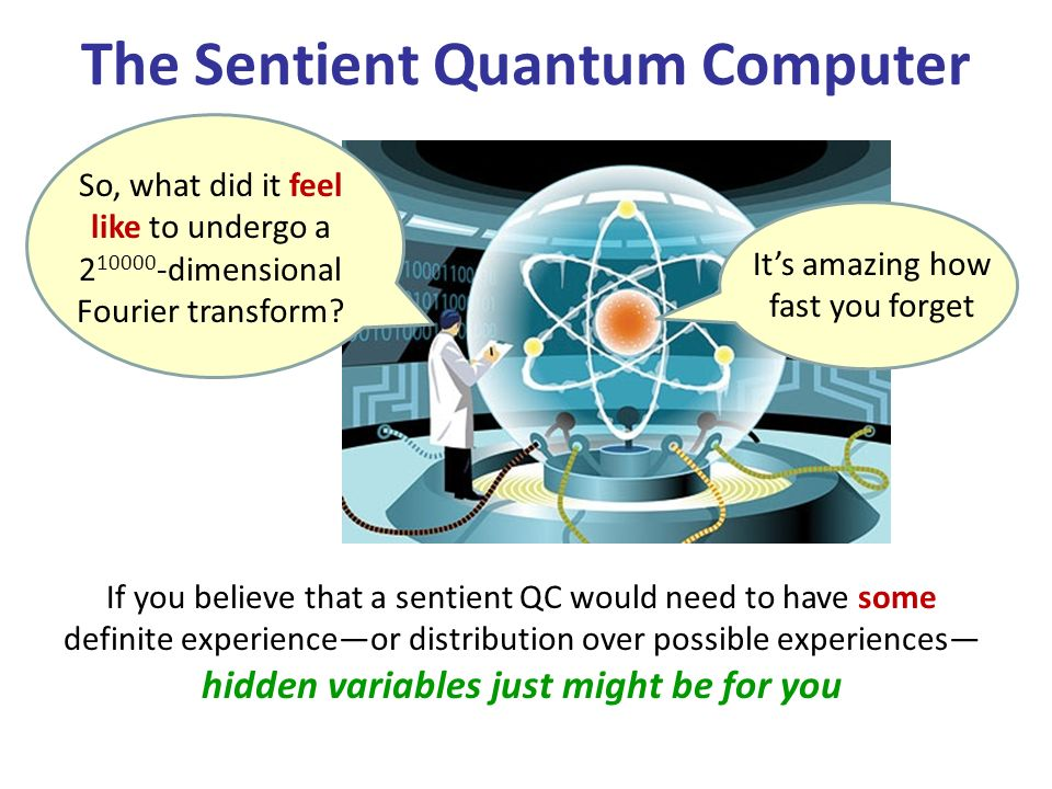 The Sentient Quantum Computer So, what did it feel like to undergo a 2 10000 -dimensional Fourier transform? Its amazing how fast you forget If you be
