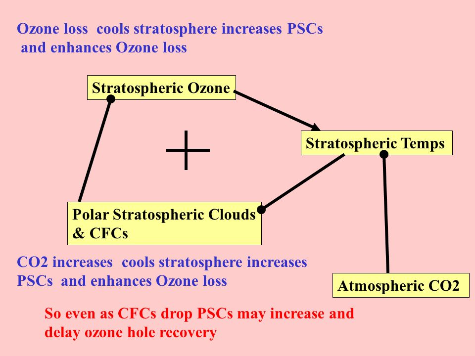 Stratospheric Ozone Polar Stratospheric Clouds & CFCs Stratospheric Temps Atmospheric CO2 Ozone loss cools stratosphere increases PSCs and enhances Oz
