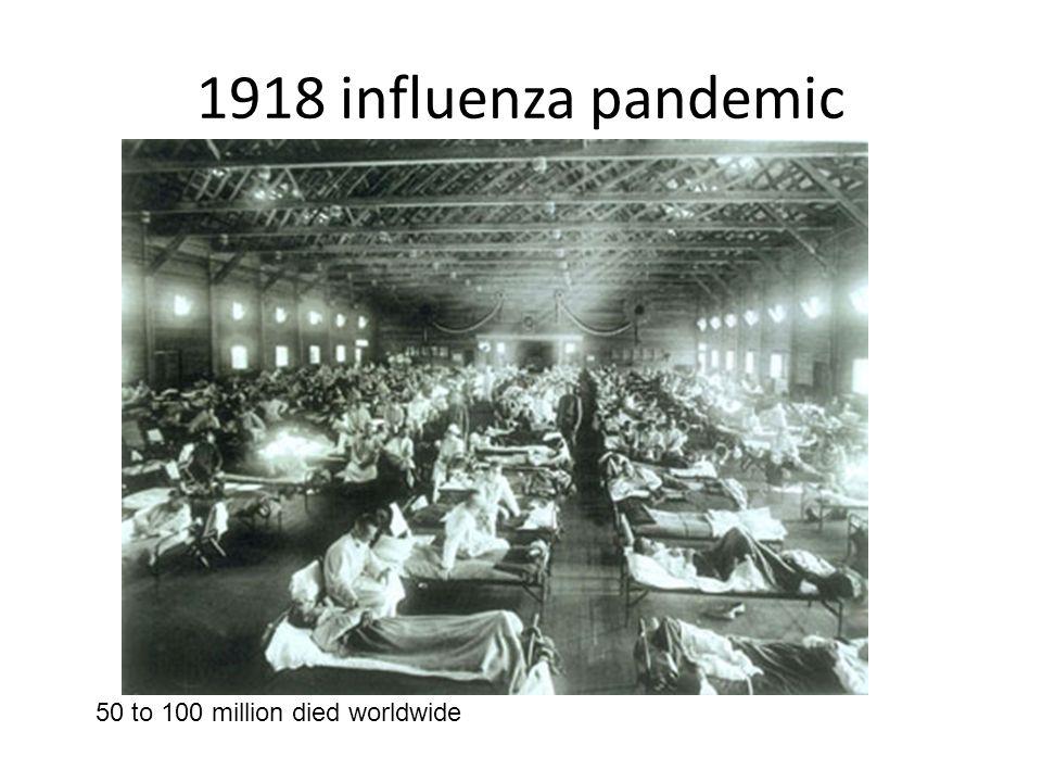 1918 influenza pandemic 50 to 100 million died worldwide