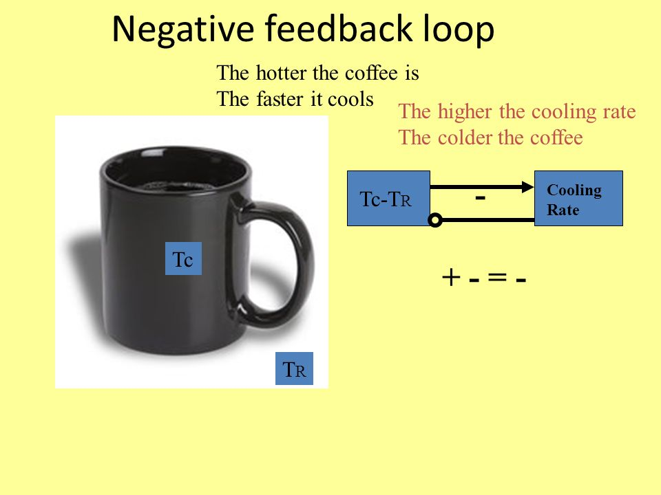 Negative feedback loop Tc TRTR The hotter the coffee is The faster it cools Tc-T R Cooling Rate The higher the cooling rate The colder the coffee = -