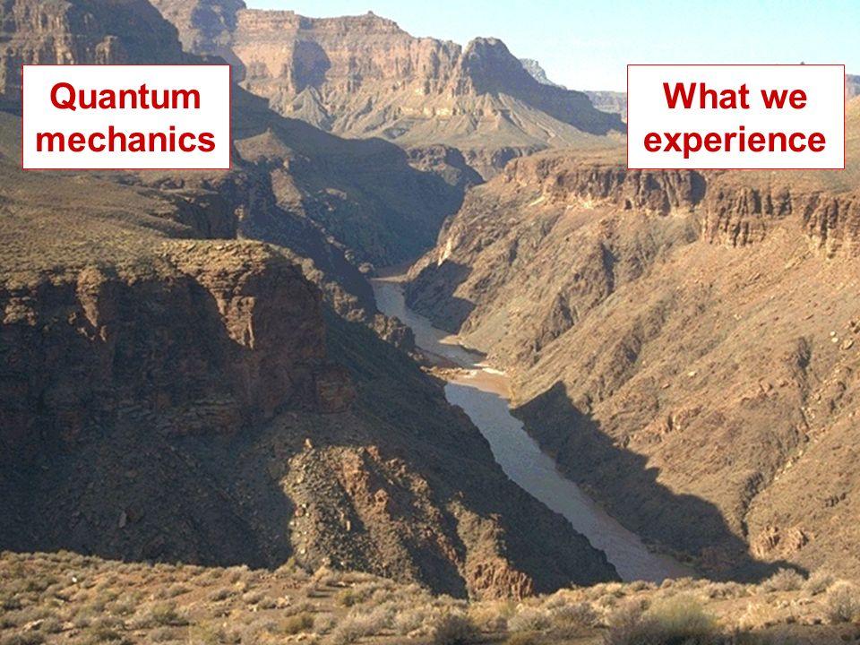 What we experience Quantum mechanics