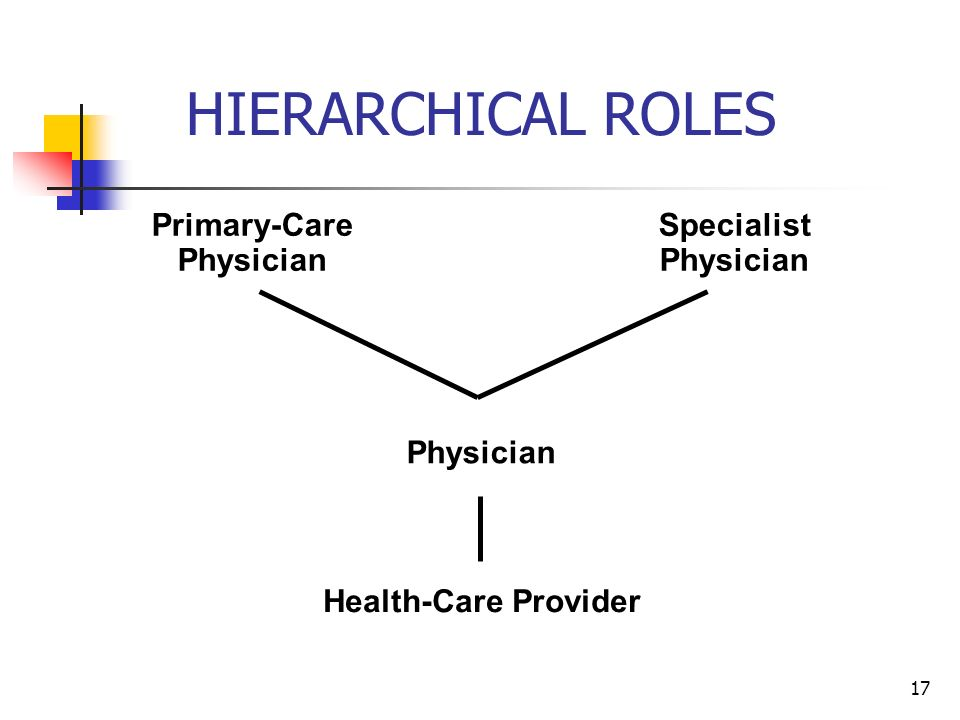 17 HIERARCHICAL ROLES Health-Care Provider Physician Primary-Care Physician Specialist Physician