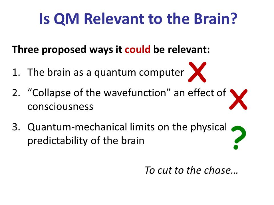 Is QM Relevant to the Brain.